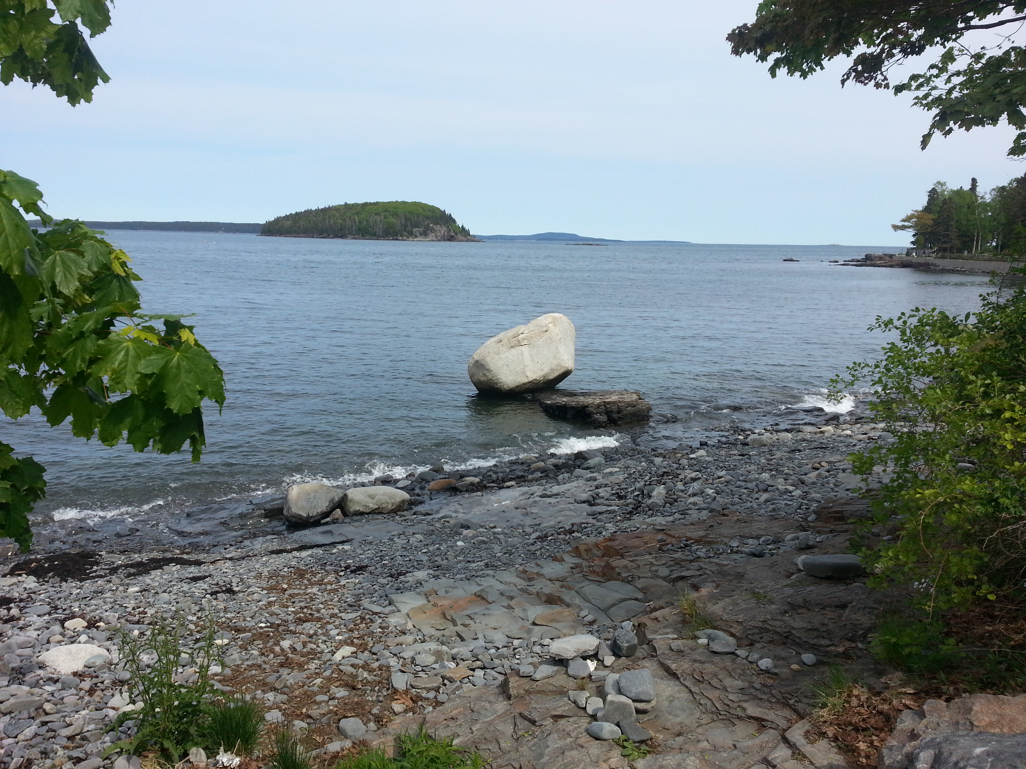 A glacial erratic seen along the Bar Harbor Shore Path. (c) Karen Hammond